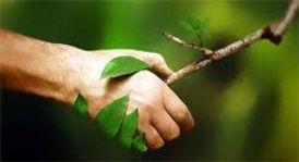 bien-être naturopathie