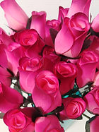rose bud pink w burgundy