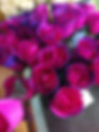 Hot Pink Purple tips Open Rose.jpg