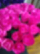 Pink hot pink tips open Rose.jpg