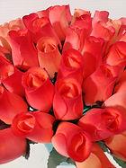rose bud orange w burgundy