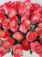 rose bud white w red