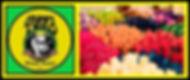JPG 2020 HTE company banner.jpg