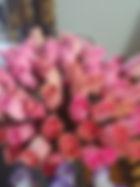 rose bud pink.jpg