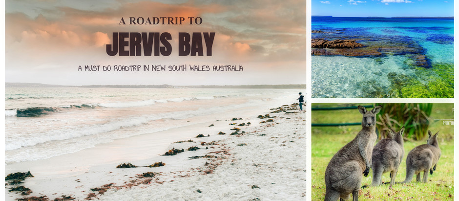 Jervis Bay - How to plan  a trip to World's whitest beaches?