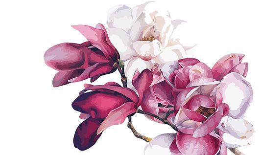 fiore pittorico