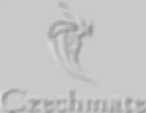 Czechmate Pest Control Glasgow - Wasps removal, insect, rodent and mole control services in Glasgow City, Renfrewshire, East Renfrewshire, East Dunbartonshire, North Lanarkshire and South Lanarkshire.