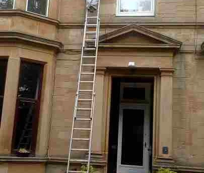 Removal of High Wasp Nests