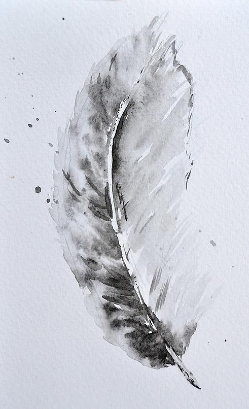 grey-feather-position-b-beverley-harper-