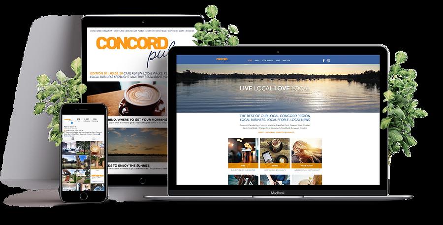 Social Pulse Website NSW Concord Pulse D