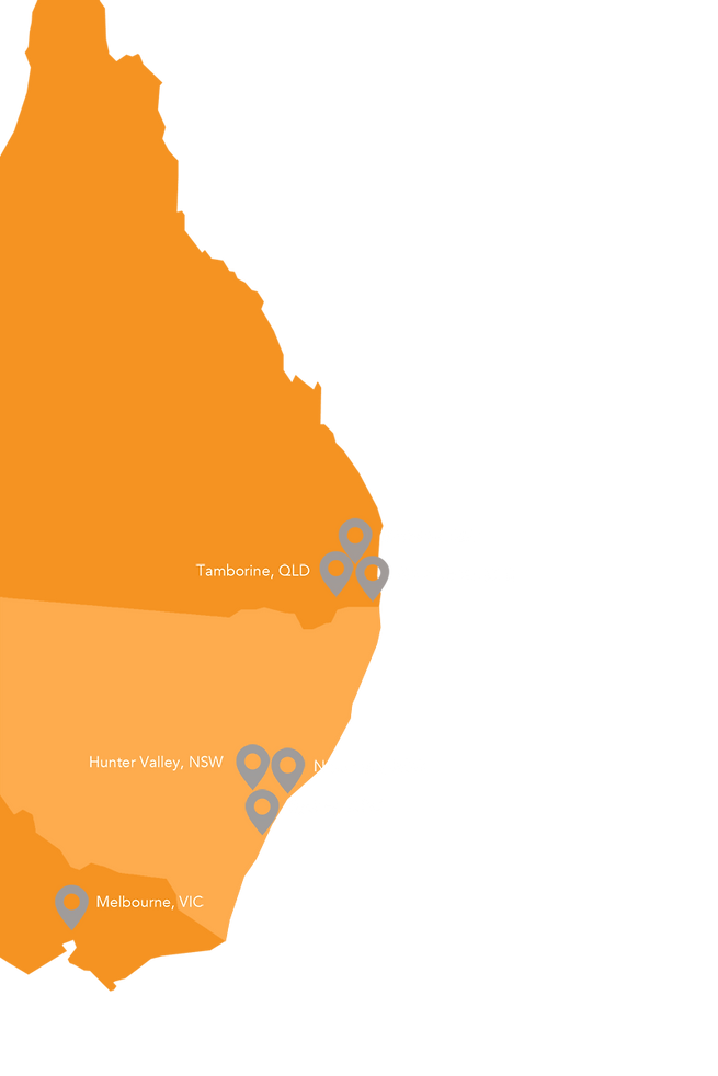 Social Pulse Services SPA map orange.png