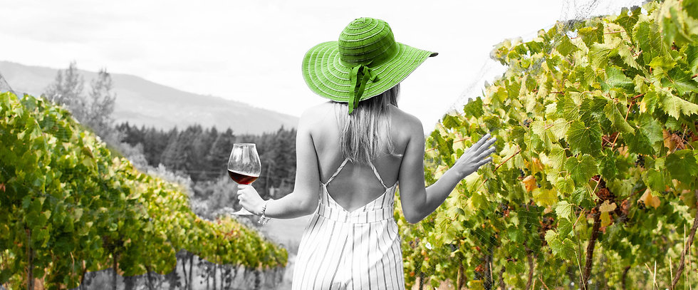 Social Pulse NEW Website Winery Makretin