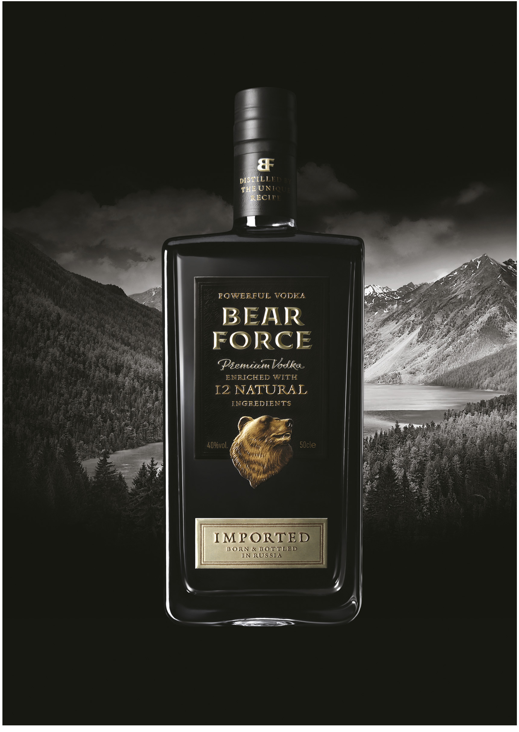 image_bear_force (2)