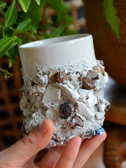 Tasse rocheuse | Roche métamorphique