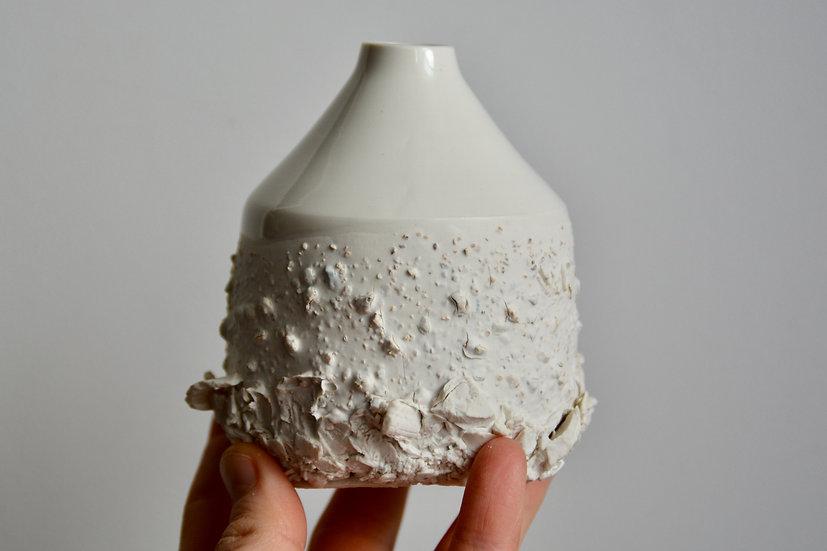 Soliflore blanc coco
