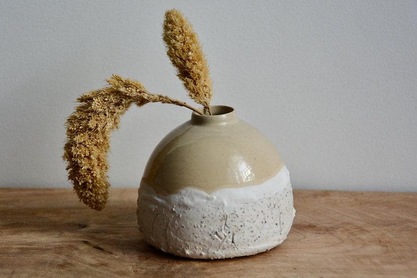 Soliflore vanille, praliné et crème