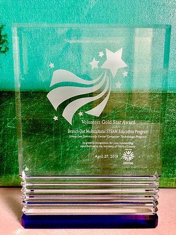Volunteer Gold Star Award.jpg