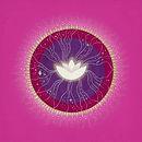 Lotus Healing Mandala.jpeg