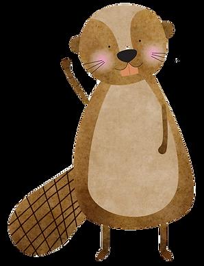 beaver%20(1)_edited.png