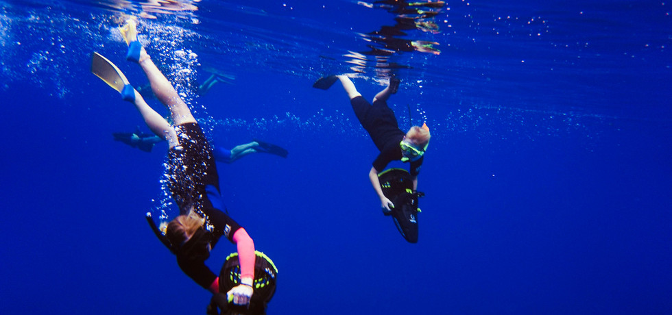 Diving into the deep blue