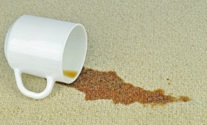 How to remove coffee stains from your Louisville, Kentucky home or office carpet