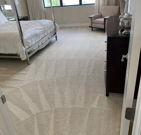 professionally steam cleaned carpets done in louisville ky 40165