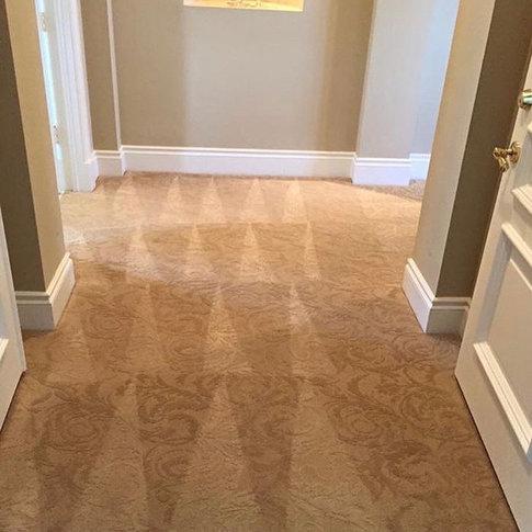 carpet cleaning done in shepherdsville kentucky 40165