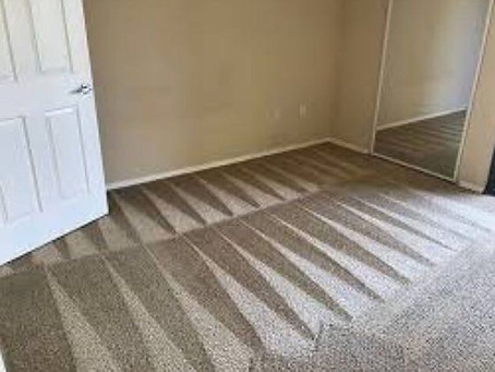 Looking for a Carpet Cleaning Service in Louisville, Shepherdsville or Mt Washington, Kentucky?
