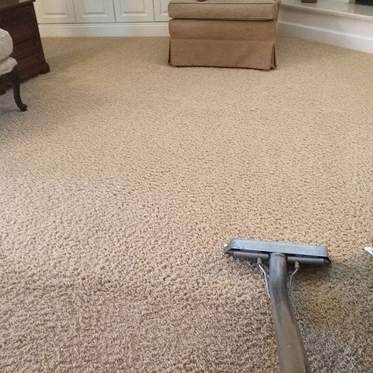 carpet cleaning company of louisville ky