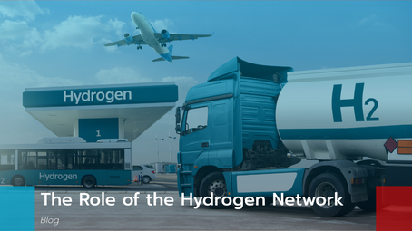 The Role of the Hydrogen Network: