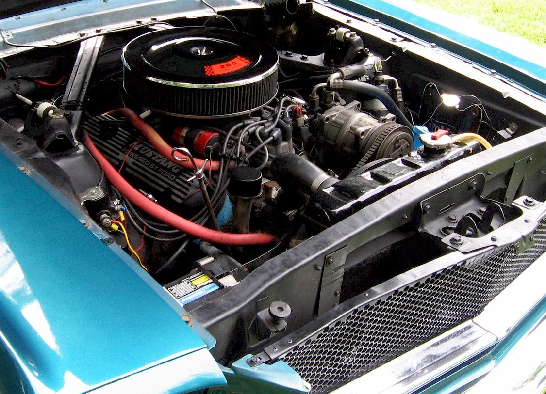 Mustang 09Sm.jpg