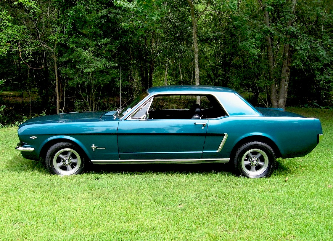 Mustang 05Sm.jpg