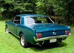 Mustang 04Sm.jpg