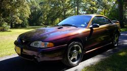 1996 Ford Mustang Mystic Cobra