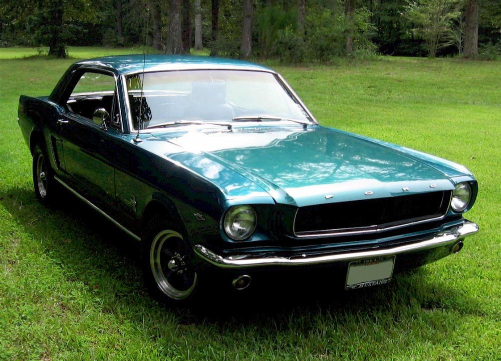 Mustang 03Sm.jpg