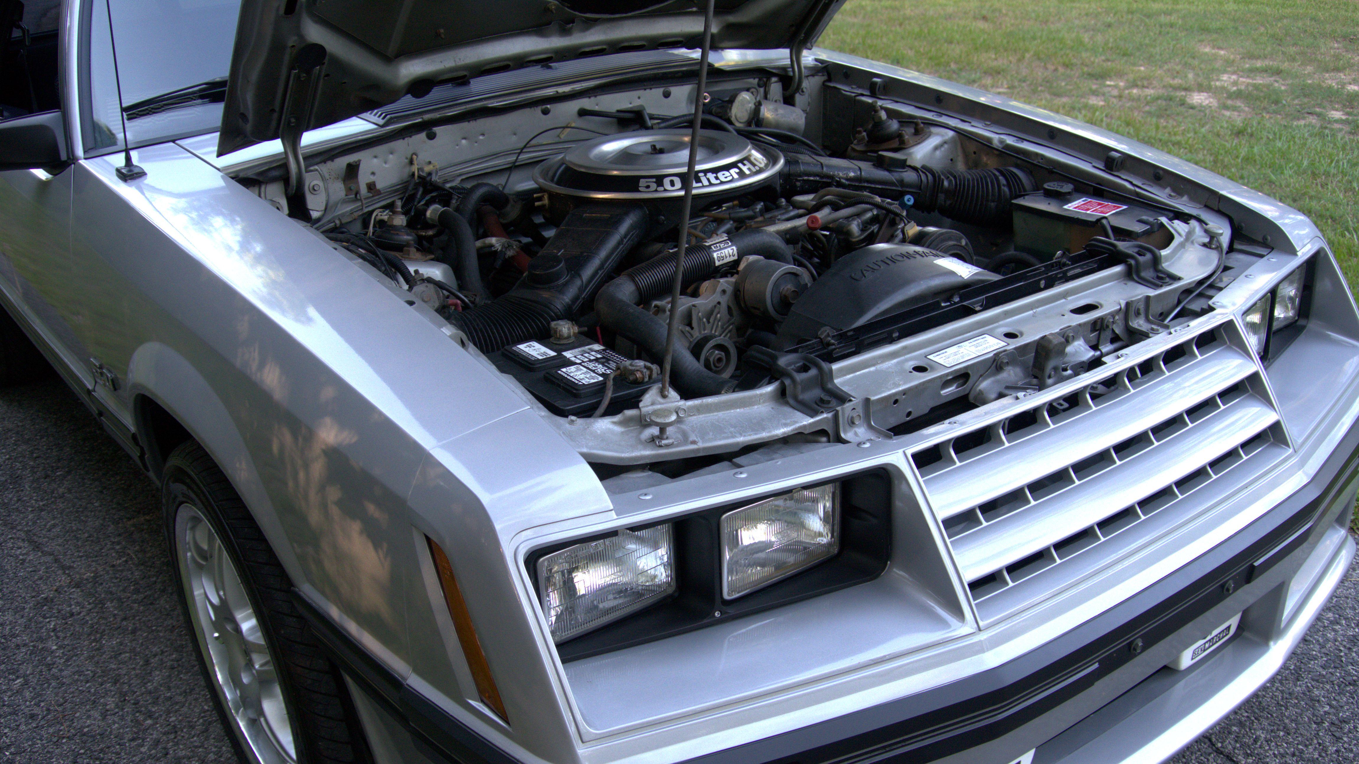 Mustang20.jpg