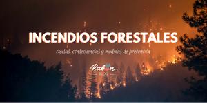 Incendios Forestales: causas, consecuencias y medidas de prevención