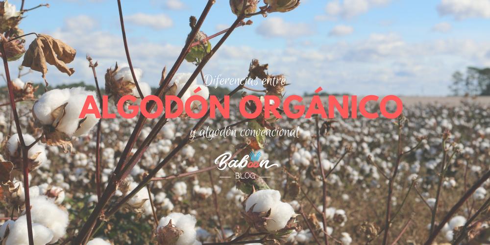 Diferencias entre algodón orgánico y algodón convencional