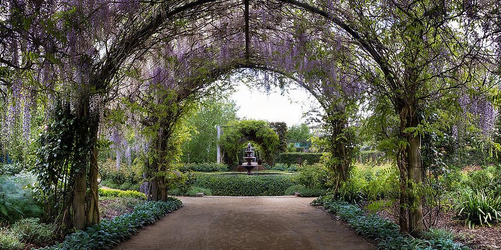 Alowyn Gardens Workshop.
