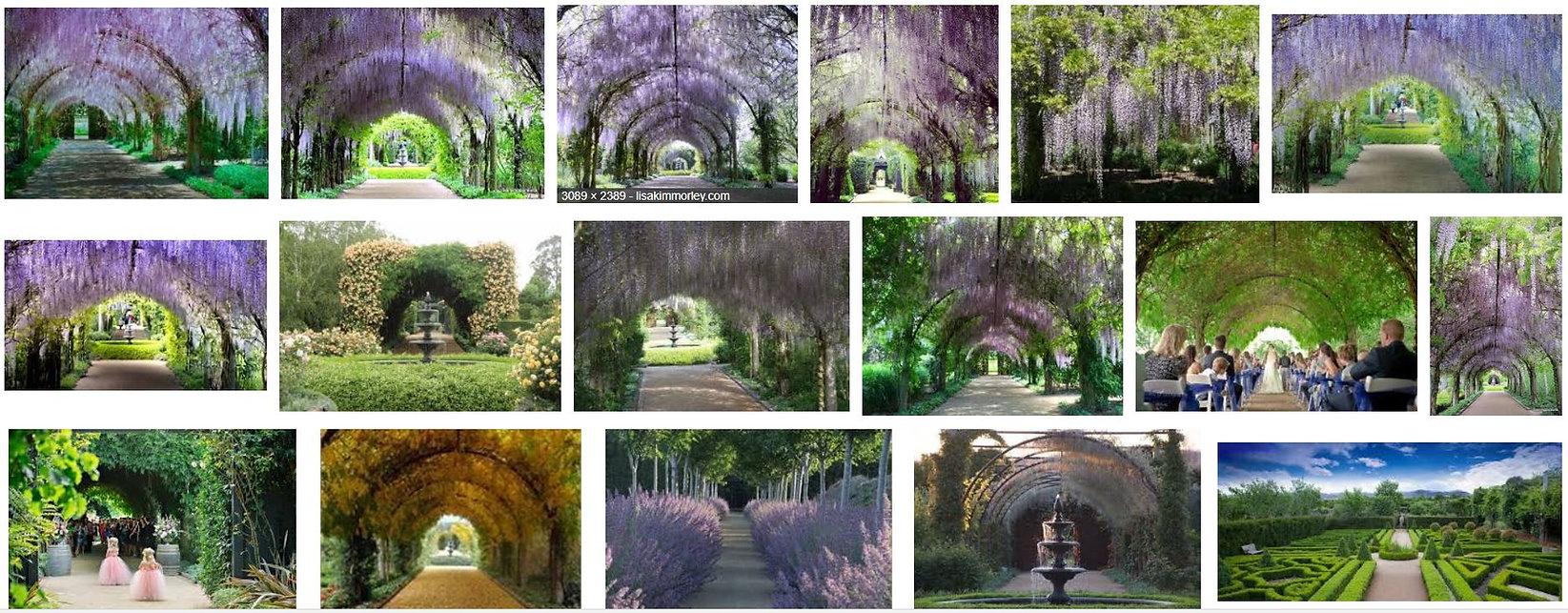 Inspiration Alowyn Gardens