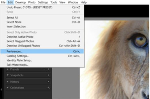 On a PC, open Lightroom and click on Edit at the top, followed by Preferences
