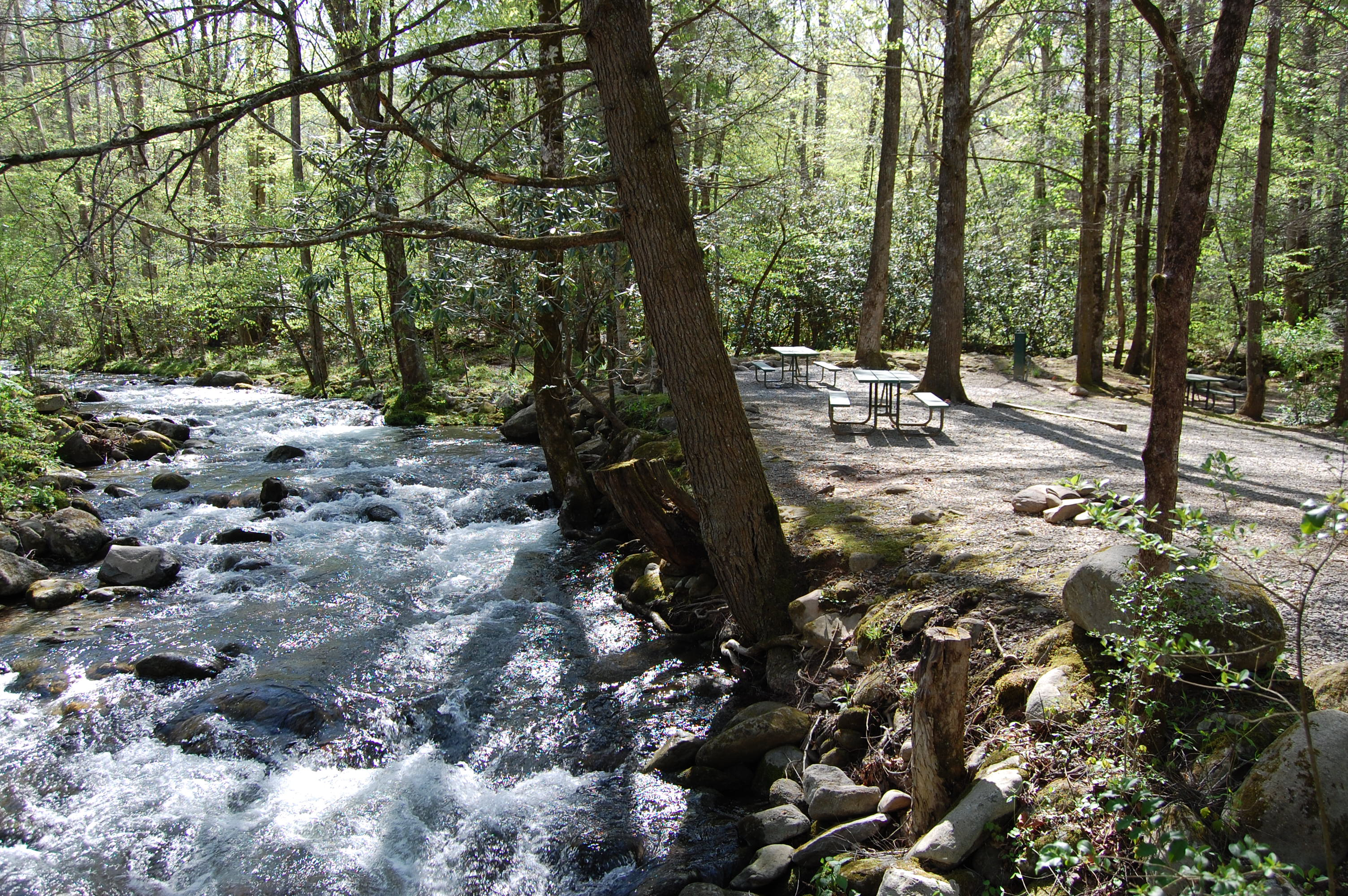 stream side camping in gatlinburg