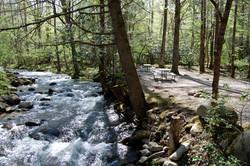 stream side camping in gatlinburg