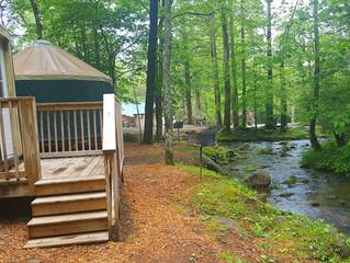 We have yurts!!