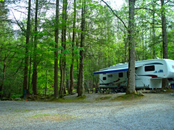 camping in the smoky mountains
