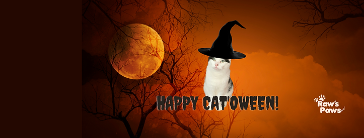 Happy cat'oween!.png