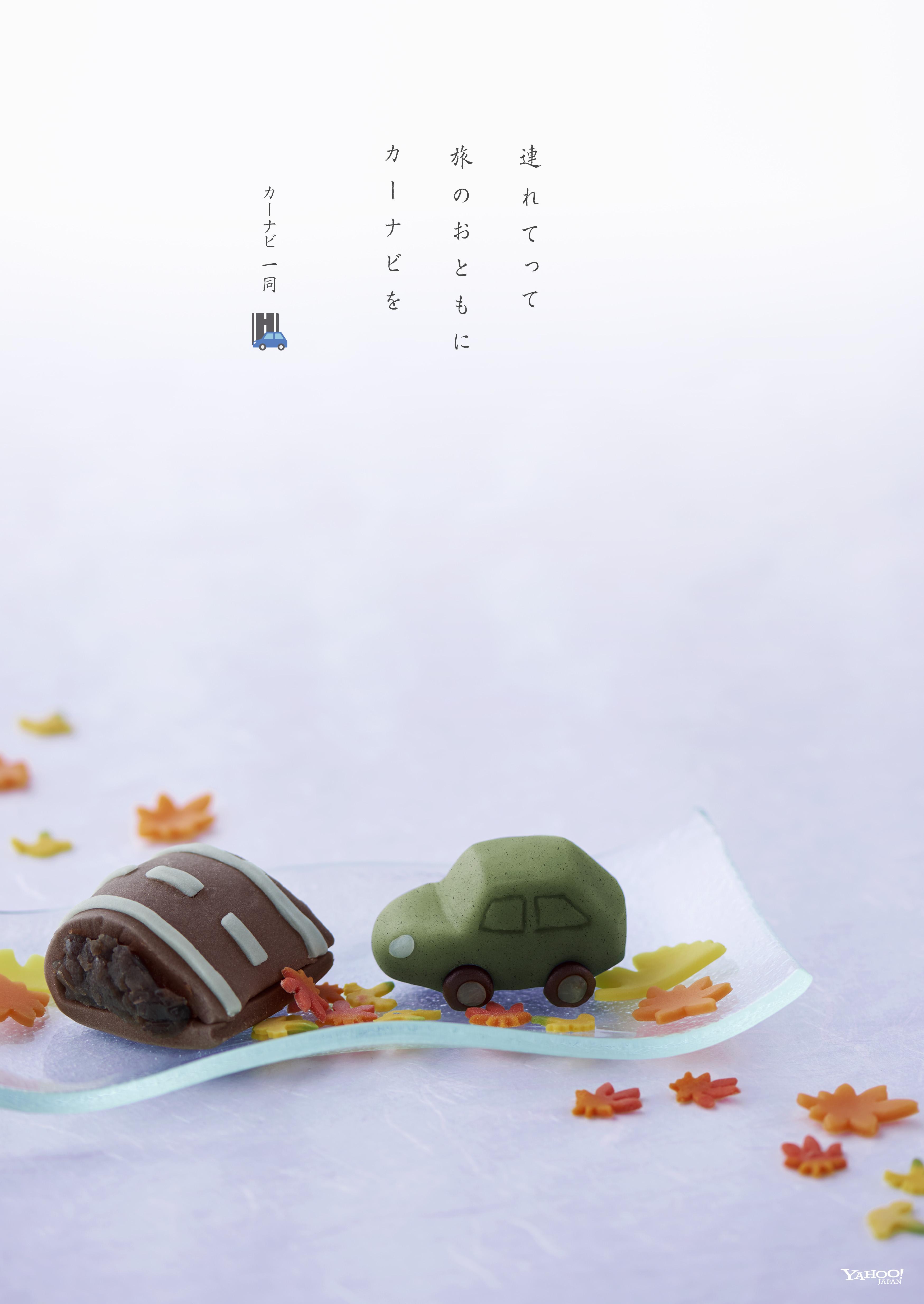 20Y_カーナビ