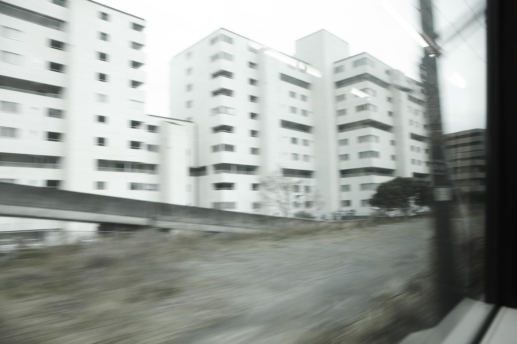 _MG_0559