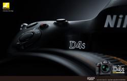 D4s_comp
