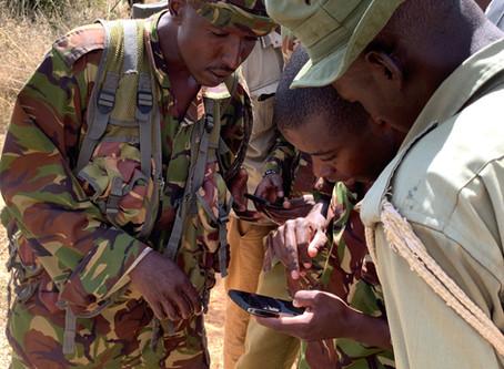 Lion Rangers Go Digital